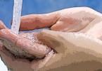 Pembahagian Suci (Taharah) & Zat-Zat Yang Suci